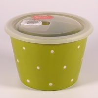 Large ceramic food storage container & microwave dish in fresh green with polka dot pattern